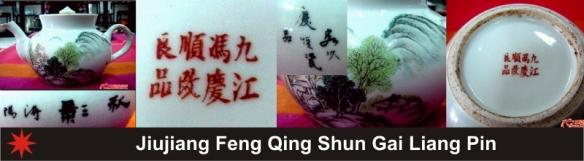 035_Jiujiang Feng Qing Shun Gai Liang Pin_1_16 (800x221)