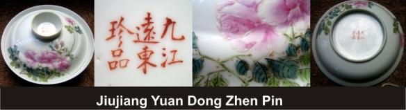 158_Jiujiang Yuan Dong Zhen Pin_1_3 (800x218)